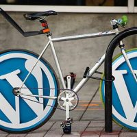 wordpress10大插件